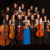 dogma chamber orchestra