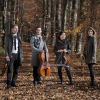 Galatea Quartett_Übersicht